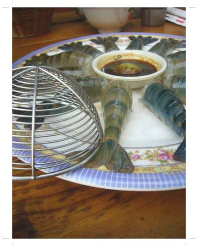 【新竹海鮮餐廳】新竹同學會聚餐餐廳分享之黃金海岸活蝦之家,終於成功約出大家來吃新竹的美食餐廳拉!!