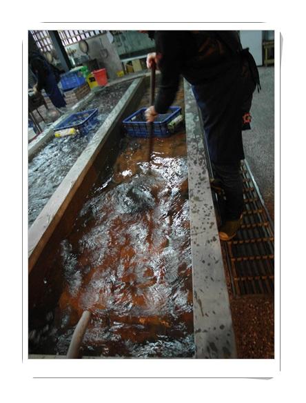 新竹餐廳,新竹美食推薦,活蝦餐廳推薦,新竹現撈活蝦料理,新竹活蝦,新竹聚餐,新竹美食,新竹餐廳推薦