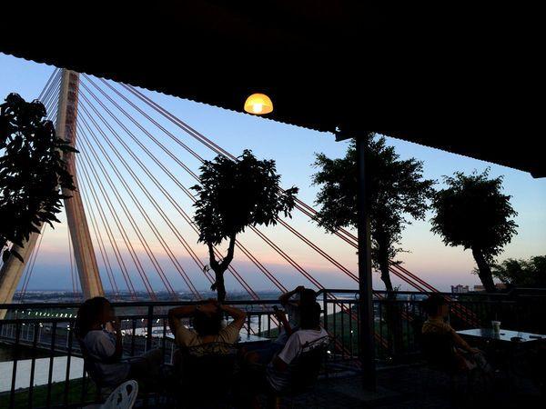 1.大樹-斜張橋畔景觀咖啡廳-2