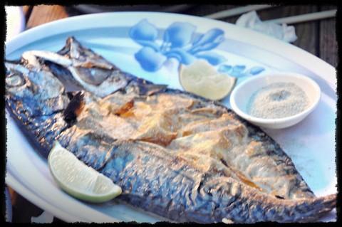 【新竹美食】新竹老街一日遊+新竹美食餐廳之黃金海岸活蝦之家,大快朵頤好爽快!!